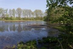 Ems-Teich